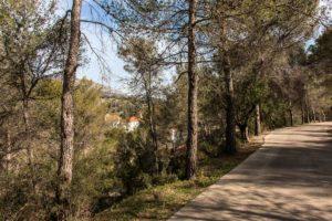 Naturaleza en Fontilles