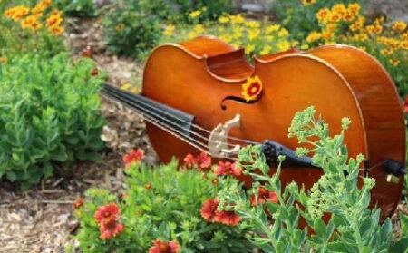 Curso de Musicosofía
